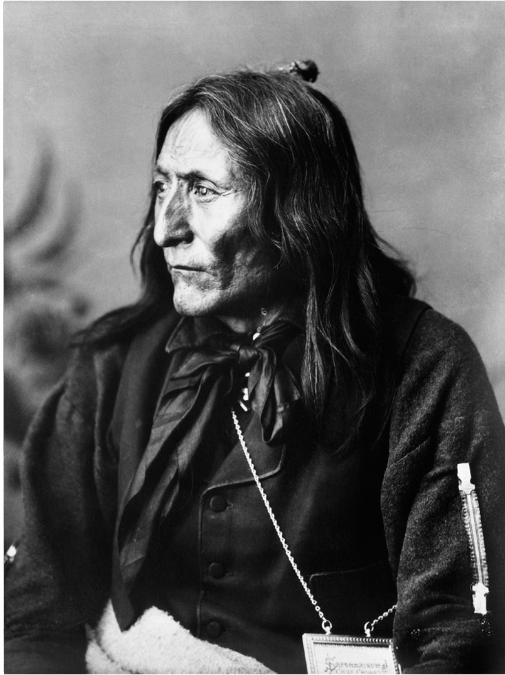 Chief Crowfoot (1830 To 1890)