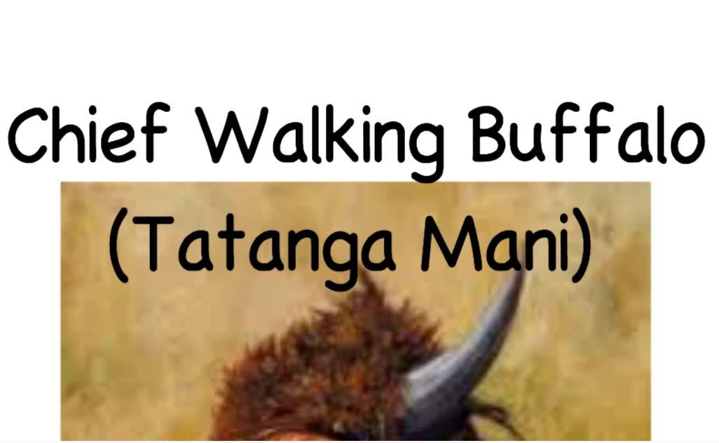 CLICK TO VIEW YouTube video of Owen Clayton - Chief Walking Buffalo -multimedia